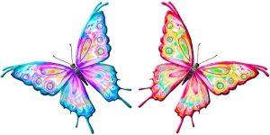 mariposas enamoradas